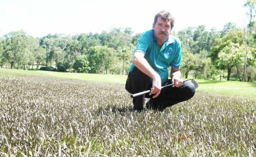 Nambour Golf Club's Stephen McMahon supports plans to beat the big wet.