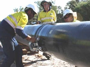 Gas approvals flawed, claims WWF