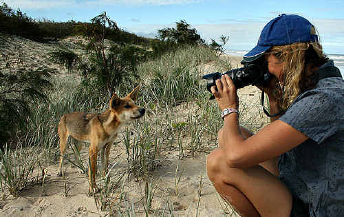 Controversial photographer Jennifer Parkhurst will share her side of the dingo feeding debate on ABC TV.