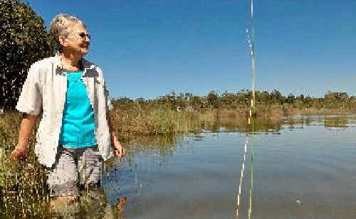 Campaigner Kay Davidson on the shores of Hearnes Lake.