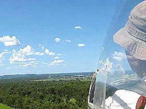 Glider attracts eagles in flight