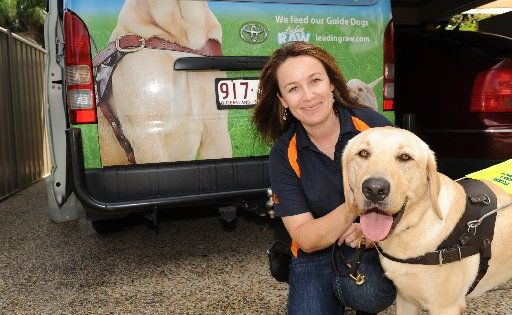 Guide Dog trainer Tracey Bashford is looking for boarders around Kawana to house dogs for up to six months.