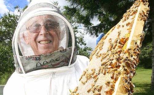 SWEET: Ipswich Beekeepers association member George Pallot with some of the bees in Pine Mountain. Photo: Rob Williams IPS240211BEES25A