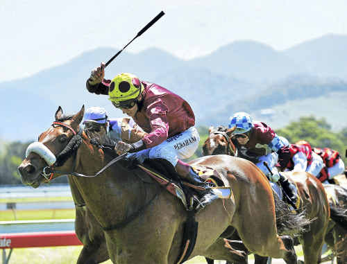 Coffs Harbour Racing Club will hold a catch-up TAB meeting on Thursday.
