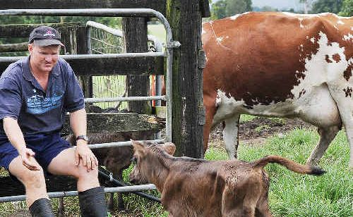 Tuncester dairy farmer Paul Weir says milk producers are being caught in the cross-fire of the supermarkets' milk price war and risk financial ruin as farm-gate prices are driven lower.
