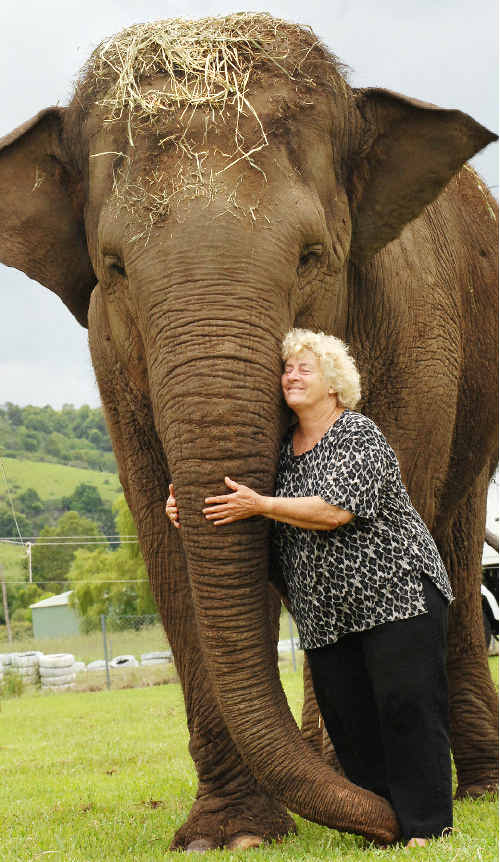 Stardust Circus owner Jan Lennon pictured in Lismore in 2007 with Gigi, one of the two Asiatic elephants they left at the Western Plains Zoo after the other animal, Arna, killed an elephant trainer while the circus was visiting Yamba that same year.