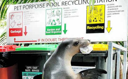 Cindy the seal demonstrates recycling to Pet Porpoise Pool visitors.