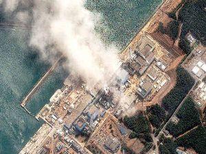 India's nuclear power failures warn against uranium exports