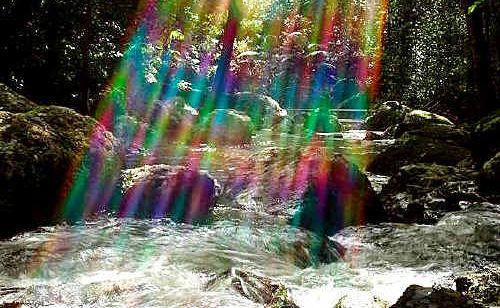 Kondalilla Falls.