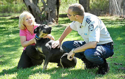 Sue Merrick and Andrew Kelly with Buddy, who was rescued from a puppy mill.