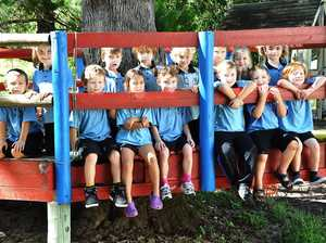Coffs Coast five year-olds developing better