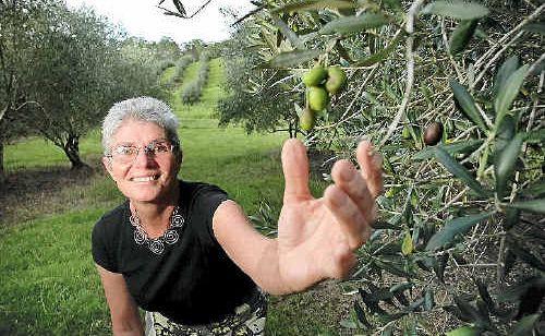 Alexina Johnson in her Obi Obi Olive Grove.