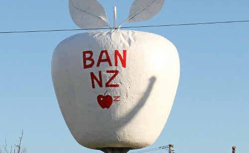 Cheeky painters express their views on New Zealand apples.