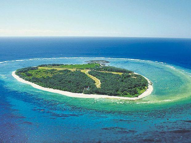 Lady Elliott Island.