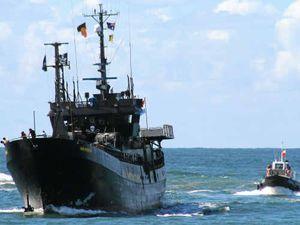 WATCH: Sea Shepherd footage of a marine massacre