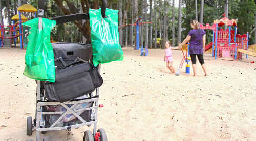 Young thieves stole an unattended pram at the Botanic Gardens last week, and attempted to steal another.