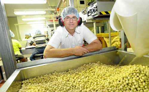 Macadamia Processing Company General Manager Larry McHugh believes that the industry will be stronger after the amalgamation with Consolidated Nuts.