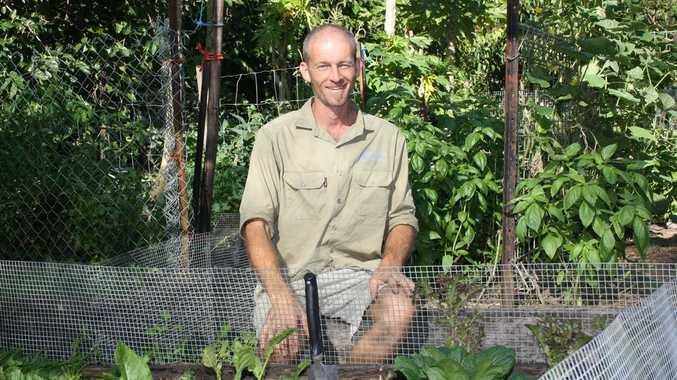 Sean Morrow in his vege garden.