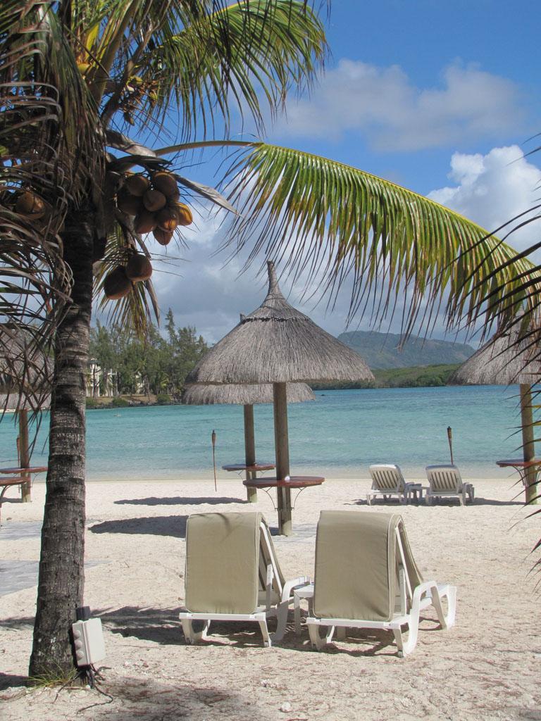 Beachcombing in Mauritius.
