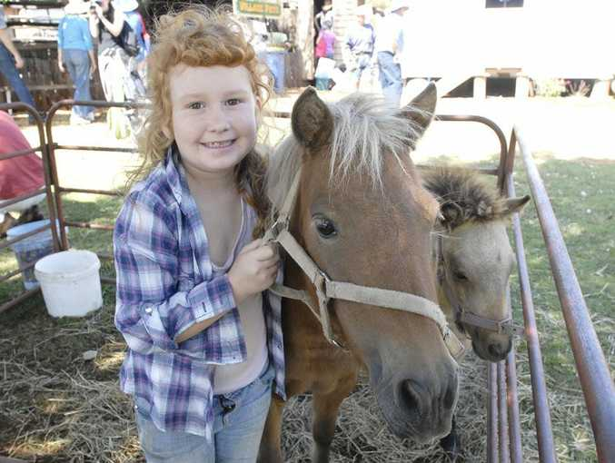 UP CLOSE: Holli Powell gets up close to some miniature horses at last year's Easter Vintage Festival