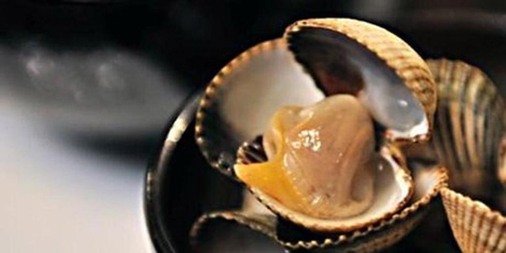A dish from the innovative Galician restaurant Asbastos 2.0.