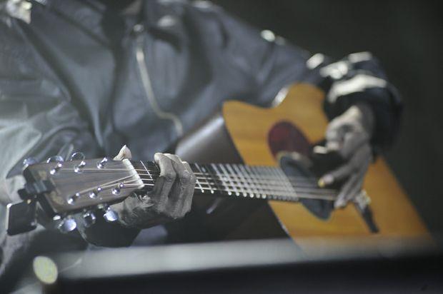Bluesfest 2011.
