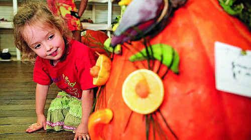 Meg Martin, 3 of Gulmarrad, checks out the winner of the junior novelty vegetable exhibit.