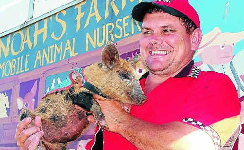 Kevin Kiley with one of his thoroughbred racing pigs.