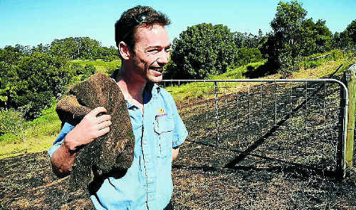 Brady's Fruit Barn worker Grant Pugh helped put out a fire on a neighbouring property in Woombye-Montville Road yesterday.
