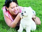 Results have found 25 per cent Aussie pet owners waits for their companion animal to be sick before visiting the vet.