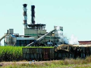 "Wilmar believes fair competition in sugar is ""premature"""