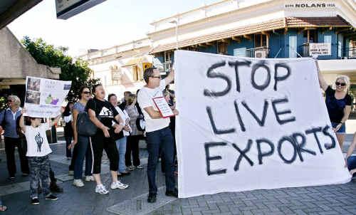 Live export protestors march in the Ipswich CBD on Saturday.