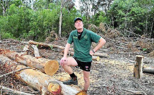 Murray Chambers from Sunshine Coast Koala Rescue disgusted with tree clearing of koala habitat