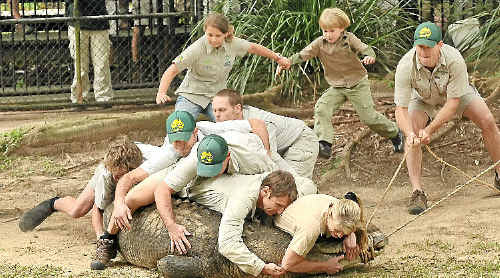 The Irwin family films a segment for an upcoming documentary series at Australia Zoo. Terri, Bindi and Robert help zoo staff move some of their crocodiles to new enclosures. Terri leads the way jumping on Agro's head, closely followed by Wes Mannion.