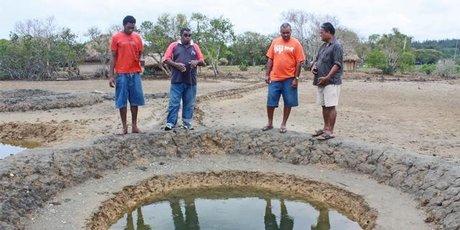 Michael Croker (at right) supervises traditional salt-making at Lomawai, Fiji.