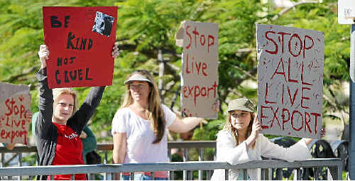 Chloe Brisk, Vanessa Teljega and Amber Teljega, 10, waved placards in Maroochydore protesting live cattle exports.