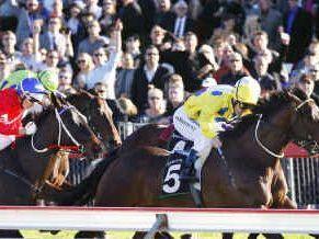 Damian Browne talks racing