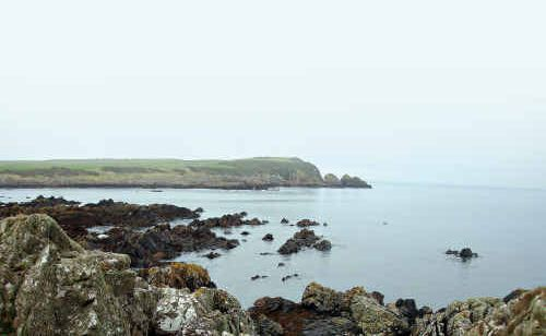VIEWS TO KILT FOR: The rugged coast near Whithorn, and above from left, Penninghame forest, The Book Shop at Wigtown and taking to the wee waters near Loch Trool.