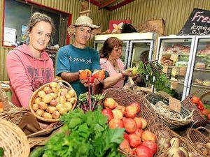 Organic farmers open gates to public