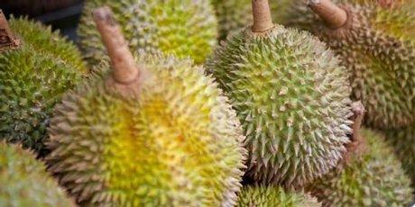 Durian fruit smells like sewers and tastes like microwaved socks.
