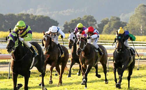 Leading Gold Coast hoop, Paul Hammersley, drives Warrior Within to victory in the Murwillumbah Cup. Photo: Scott Powick