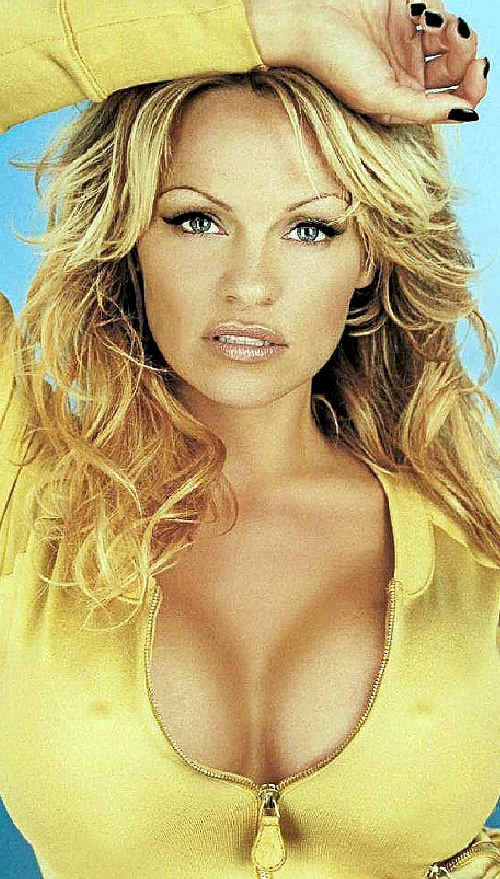 STAR POWER: Celebrities like Pamela Anderson inspired more than 300,000 US women to undergo breast augmentation last year.