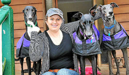 Katrina Koutsellis with greyhounds Sam, Tazzie and Rolf.