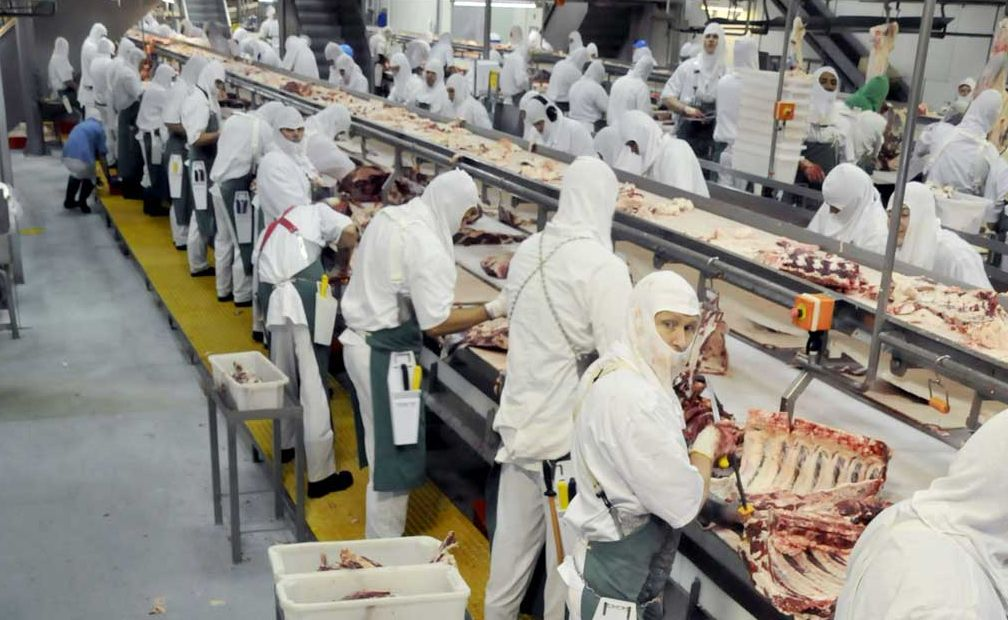 BACK TO BUSINESS: Beef City employees are back at work today ending a two-week shutdown of the plant.