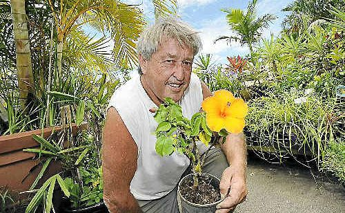 Trevor Murray from Trev's Recycled Garden at West Ballina has been giving new life to plants from that would otherwise have ended up in landfill and says others could follow suit.