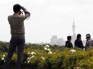 Asia, Pacific lead tourism rebound