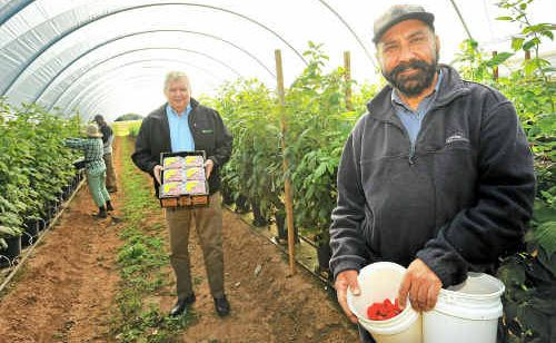 Berry Exchange general manager Peter McPherson, centre, and picker Surjeet Bhasin.