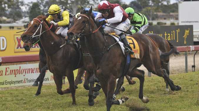 Horse number 7, Jerezana, ridden by Andrew Gibbons, comes in for the win during Race 6, the WHK Ramornie Handicap.
