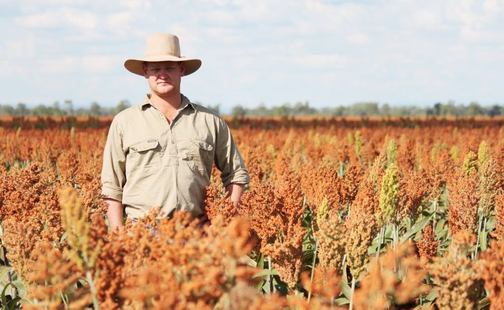 Grain grower Andrew Bate, of the Golden Triangle Action Group.