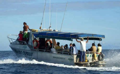 Pelena Express operates in the Western provinces of Solomon Islands.